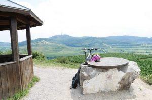 E-Mountainbike Fahrtechnik und Tour Kaiserstuhl/Mondhalde von Bollenhut