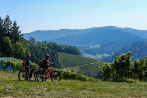 Bollenhut.bike Glottertal Schwarzwald