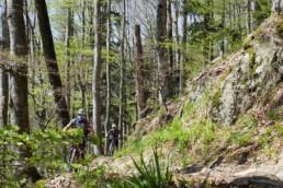 Bollenhut.bike Mountainbiketouren im Schwarzwald