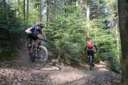 E-Mtb Fahrtechnikkurs Level 2 feel the uphill flow