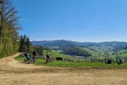 Bollenhut.bike geführte Mountainbike / E-Mountainbike Touren im Schwarzwald
