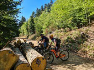 Bollenhut.bike E-Mountainbike Fahrtechnikkurs