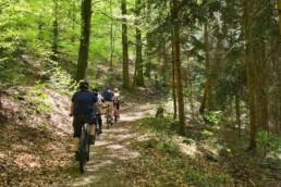 Bollenhut.bike geführte Mountainbiketouren / E-Mountainbiketouren