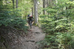individuelle (E)-MTB Touren im Schwarzwald